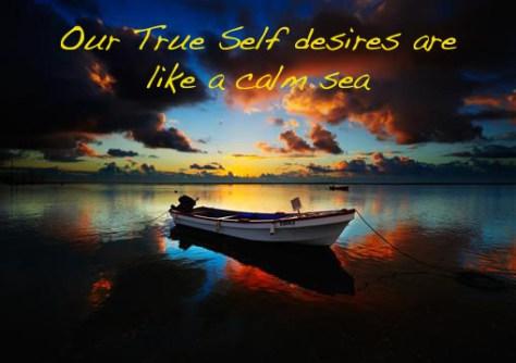 True SElf Desires