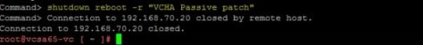 patching-vc-ha-cluster-21