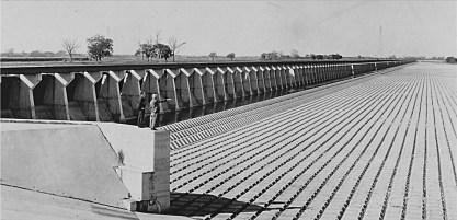 bonnet_carre_spillway_1930s_state_library_la