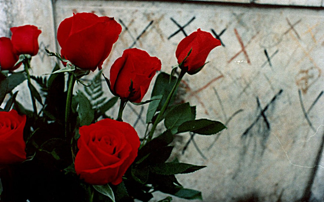 Roses for Marie Laveau in St. Louis Number 1