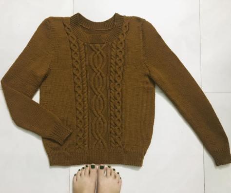 Chart hướng dẫn đan áo vặn thừng màu bò dễ thương