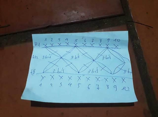 Chart móc mũ vành gợn nhẹ cuả tác giả Đào Ngọc Anh