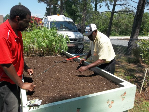 Steve and Isaiah planting some fall crops in our garden boxes!