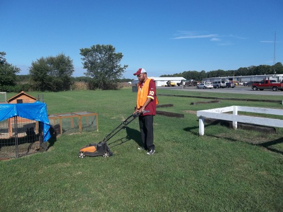 Cut, DJ, cut! DJ is learning how to use a push mower and doing a great job!