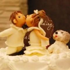 結婚式に100万円単位お金を使うだけじゃない!トータル30万円弱で結婚式と披露宴を済ませるための考え方
