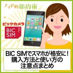BIC SIM(ビックシム)でスマホが月1,000円代に!購入方法と使い方の注意点まとめ