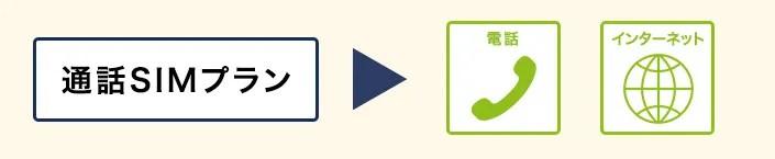 通話SIMプランは電話とインターネット上ができる