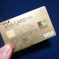 ANA VISAワイドゴールドカードの年会費を安くする方法・キャンペーン・メリットやデメリットとお得な使い方のまとめ
