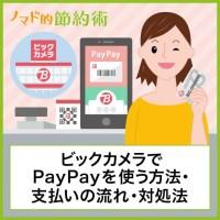 ビックカメラでPayPayを使う方法・支払いの流れ・対処法