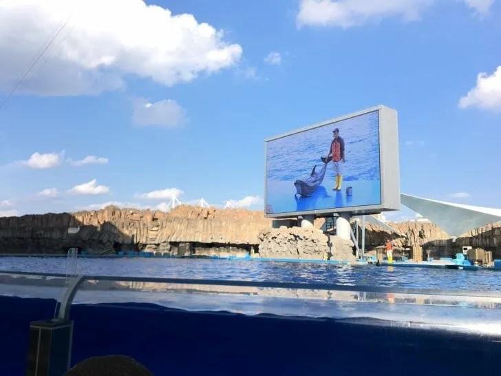 名古屋港水族館ショーの様子
