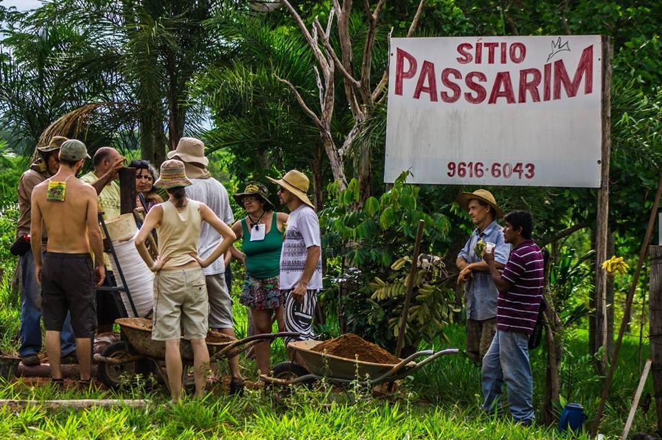 Sitio Passarim10