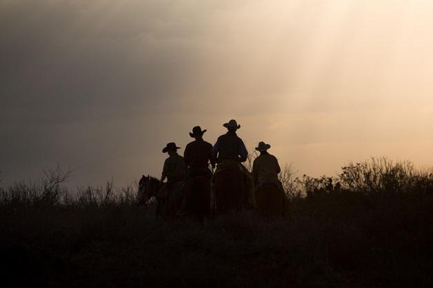 https://i0.wp.com/nomadesdigitais.com/wp-content/uploads/2015/12/cavalos-14.jpg