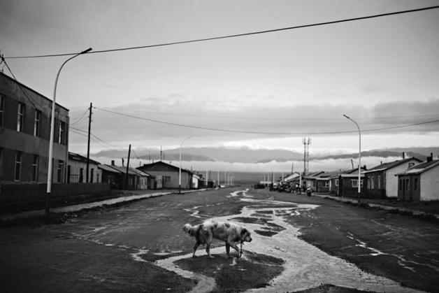 https://i0.wp.com/nomadesdigitais.com/wp-content/uploads/2016/02/Darvi-Mongolia.jpg