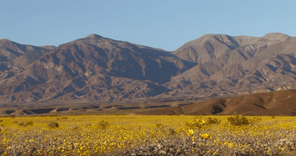 https://i0.wp.com/nomadesdigitais.com/wp-content/uploads/2016/02/deserto2.png