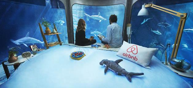 airbnb-aquario (3)