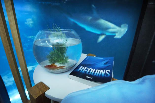 airbnb-aquario (5)