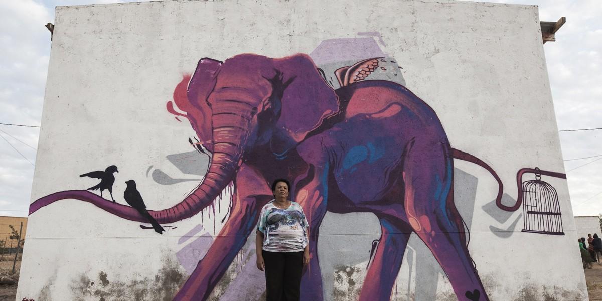 elefante12