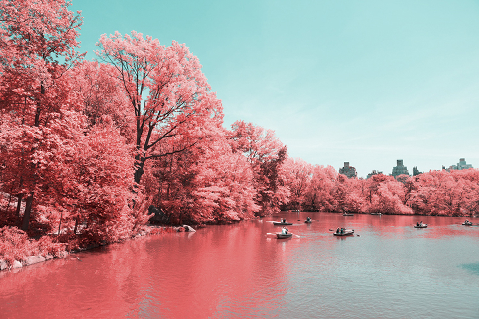 10_Central-Park-Infrared