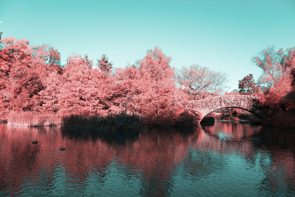 1_Central-Park-Infrared
