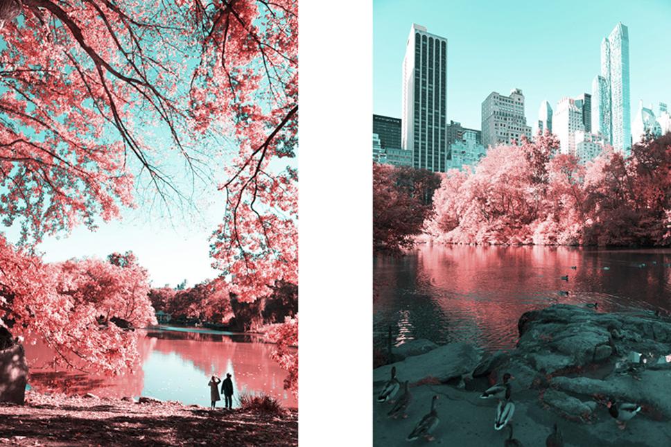 3_Central-Park-Infrared