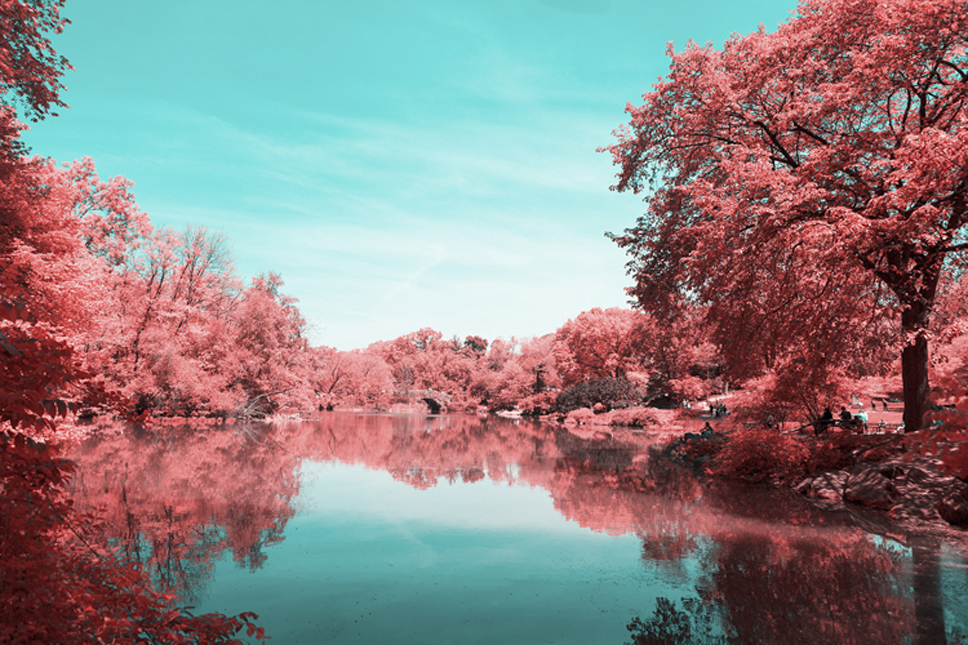 4_Central-Park-Infrared