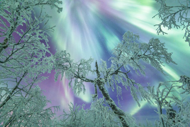 northern-lights-photography-finland-8-584e5cf815521__880