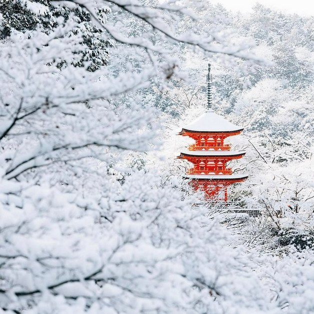 heavy-snowfall-kyoto-japan-2017-3-587dcc21b9025__700