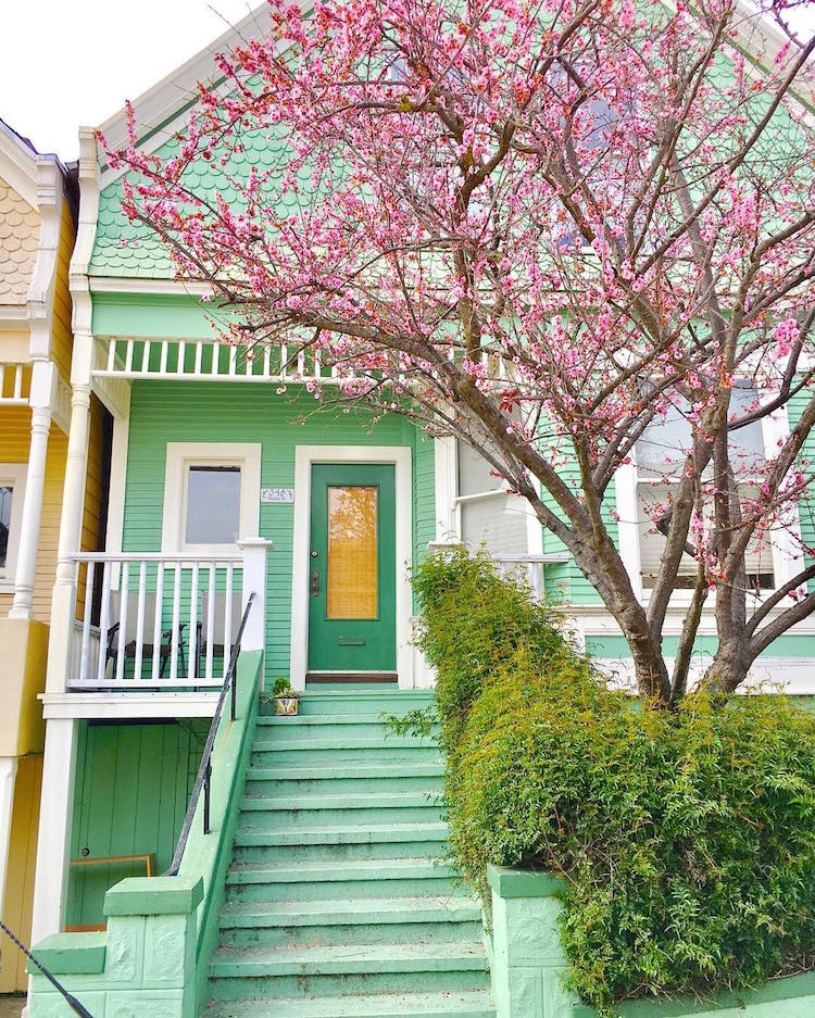 candy-colored-houses-san-francisco-12
