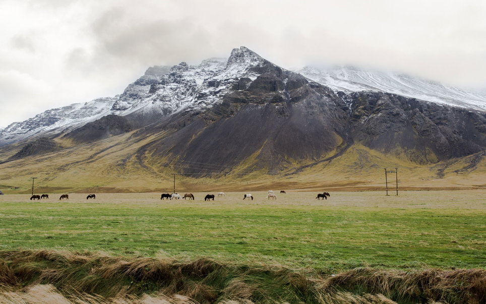 Iceland-august-travel-BPTM0416