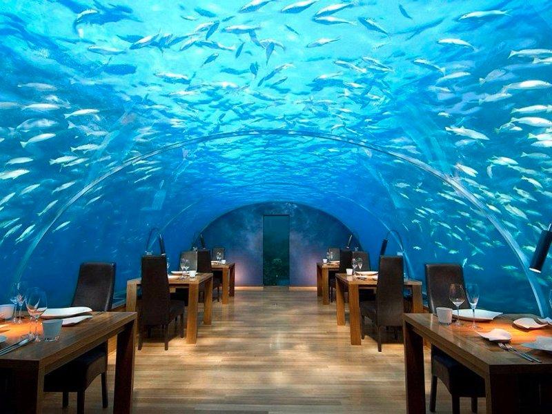 ithaa-undersea-restaurant-maldives