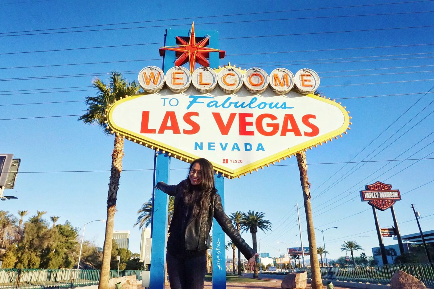 The Beginner's Guide to Las Vegas