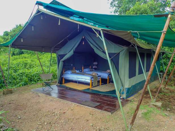 11 Day 16, Bukima Tented Camp, Virunga National Park, DR Congo