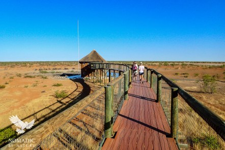 148, Day 256, Olifantsrus Campsite, Etosha National Park, Namibia