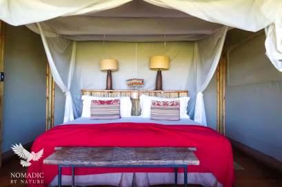 194, Days 364-366, Kalahari Plains Camp, Central Kalahari Game Reserve, Botswana