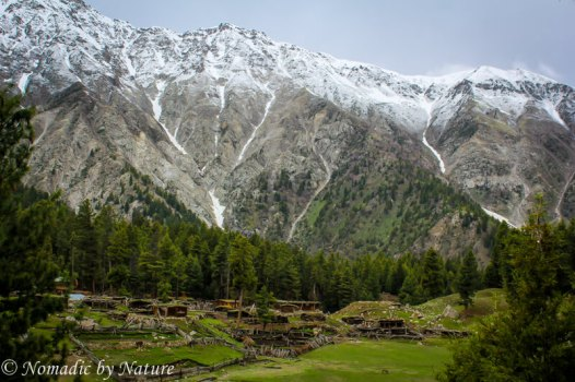 Dusted Peaks above Fairy Meadows