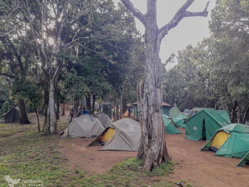 82 Day 130, Big Tree Campsite, Kilimanjaro National Park, Tanzania