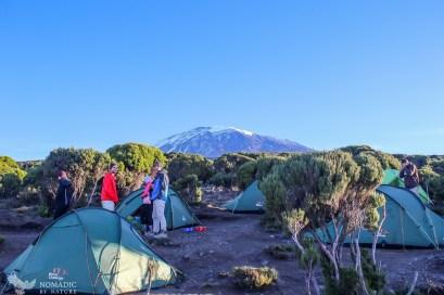 86 Day 134, Millenium Campsite, Kilimanjaro National Park, Tanzania