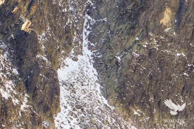 The Priecne sedlo via ferrata, see small climbers just to the right of the snow-line, High Tatras, Slovakia