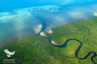 River through Mangrove Forest, Quirimbas National Park, Mozambique