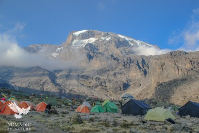 Barranco Campsite, Mount Kilimanjaro, Tanzania