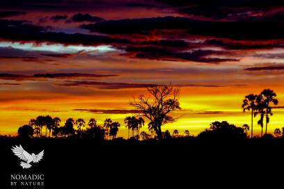 Sunset on Safari in the Jao Concession, Botswana