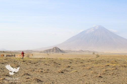 A Maasai Herder in Front of Ol Lengai Volcano, Lake Natron, Tanzania