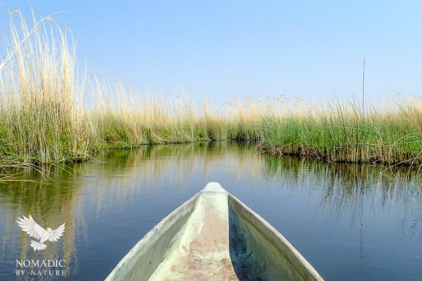 A Mokoro Ride through the Reeds, Okavango Delta, Botswana