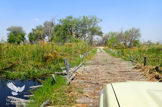 Third Bridge, Moremi Game Reserve, Botswana