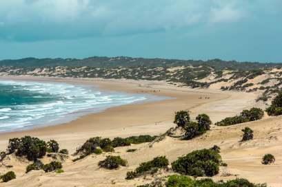 The Wild, Untamed, Shela Beach