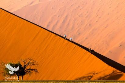 Climbing Dune 45 at Dawn, Sossusvlei, Namibia
