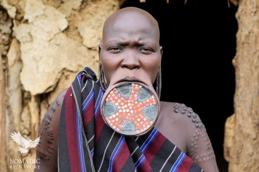 The Famous Lip Plate of the Mursi Tribe, Ethiopia