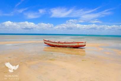 Low-Tide, Vilanculos, Mozambique