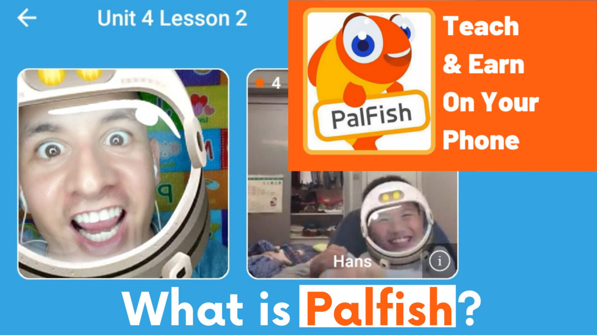 Palfish, What is Palfish?