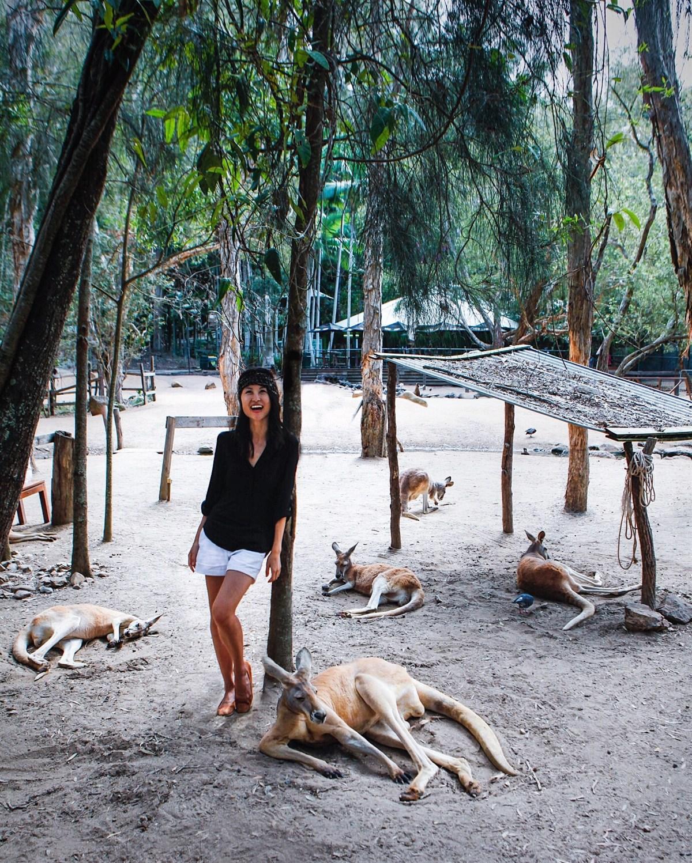 Nomadic Fare at Currumbin Sanctuary